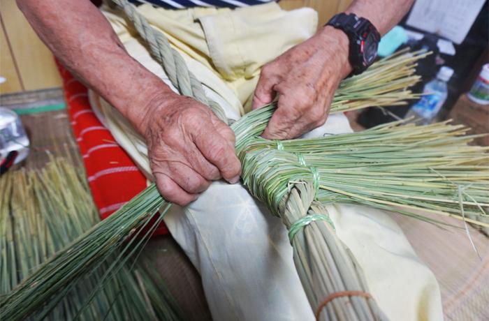収穫された青藁
